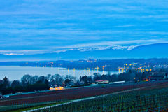 Dawn at a Swiss Vineyard Royalty Free Stock Images