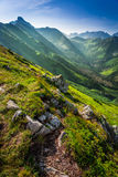 Dawn in the Tatra Mountains in summer Royalty Free Stock Photography
