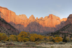 Dawn on Towers Of The Virgin. Dawn paints Towers of the Virgin red, competeing with the yellows of the autumn foliage in Zion Canyon National Park Royalty Free Stock Photography