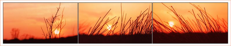 Dawn triptych. Sunset of the west coast of ireland royalty free illustration