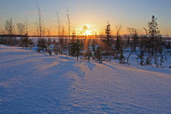 Dawn in tundra Royalty Free Stock Photo