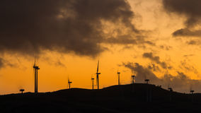 Dawn Wind Farm Stockfotos