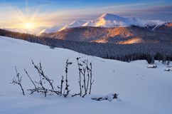 Dawn in winter in mountains Stock Photography