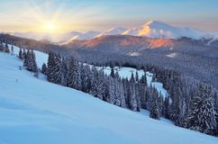 Dawn in winter in mountains Stock Images
