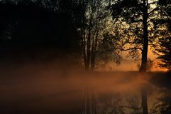 Dawned near pond Stock Photography