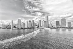 Dawntown Майами, США Взгляд горизонта Майами городского на солнечном и пасмурном дне с изумительной архитектурой портрет человека стоковые фотографии rf