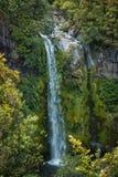 Dawson Falls Fotografia Stock