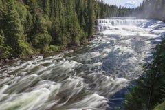 Dawson Falls Photos libres de droits