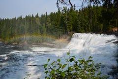 Dawson Falls in Canada Stock Foto