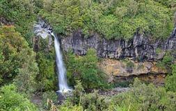 Dawson Falls em Taranaki NP fotos de stock royalty free