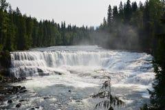 Dawson Falls in Kanada stockbild
