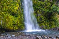 Dawson Falls at Mount Taranaki. Bottom part of the Dawson Falls at a slope of Mount Taranaki, New Zealand royalty free stock photos