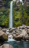 Dawson Falls New Zealand Images libres de droits
