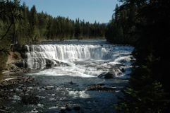 Dawson Falls Wells Gray Park. Dawson Falls in Wells Gray national park on the Murtle River Stock Photos
