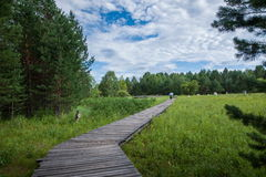 Daxinganling Mohe Arctic Arctic Village sandbar forest trail Stock Images