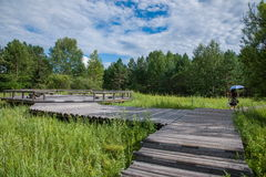 Daxinganling Mohe Arctic Arctic Village sandbar forest trail Royalty Free Stock Photography