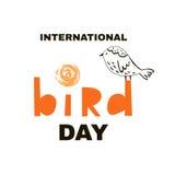 鸟day2 免版税图库摄影