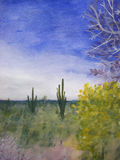 A Day in the Arizona Desert. Natural, scenic, color landscape painting with lots of cacti, sagebrush, trees and other scenic plant life in a hot Arizona desert Vector Illustration