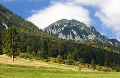 Day of autumn in Carpathian. Turnu Mountain in Piatra Craiului ridge (Carpathians), in september morning Stock Photography