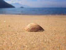Day on the beach. Ilha Grande beach, in Brazil royalty free stock photo