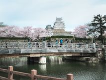 On the day of cherry blossoms in full bloom at Himeji-Jo Castle royalty free stock photos