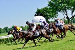 Day de presidente en la pista Partenice, raza para el grupo de 3 años de los caballos solamente III en Wroclaw en Juni 8, 2014 Fotos de archivo