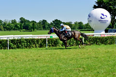 Day de presidente en la pista Partenice, raza para el grupo de 3 años de los caballos solamente III en Wroclaw en Juni 8, 2014 Foto de archivo libre de regalías