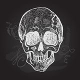 Day of The Dead black and white Skull Stock Photos
