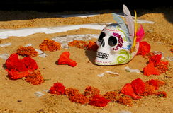 Day of the dead II Stock Photos