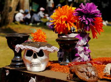 Day of the dead IV Royalty Free Stock Photography