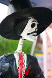 Day of the dead musical skeleton Royalty Free Stock Images