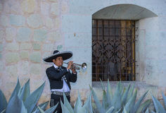 Day of the Dead. OAXACA , MEXICO - NOV 02 : Mariachi perform during the carnival of the Day of the Dead in Oaxaca, Mexico, on November 02 2015. The Day of the royalty free stock photo