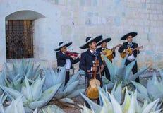 Day of the Dead. OAXACA , MEXICO - NOV 02 : Mariachis perform during the carnival of the Day of the Dead in Oaxaca, Mexico, on November 02 2015. The Day of the stock photography