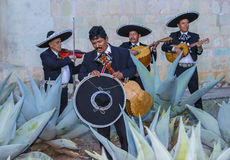 Day of the Dead. OAXACA , MEXICO  - NOV 02 : Mariachis perform during the carnival of the Day of the Dead in Oaxaca, Mexico, on November 02 2015. The Day of the Royalty Free Stock Image