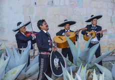 Day of the Dead. OAXACA , MEXICO  - NOV 02 : Mariachis perform during the carnival of the Day of the Dead in Oaxaca, Mexico, on November 02 2015. The Day of the Royalty Free Stock Images