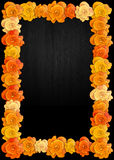 Day of the dead poster with traditional cempasuchil flowers used for altars Royalty Free Stock Images