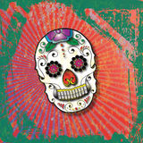 Day of the Dead Slightly Grungy Sugar Skull. Bright Sugar Skull design with green and red grunge background Royalty Free Stock Image