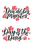 Day of the dead vector illustration.   Royalty Free Stock Images