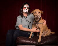 Day of The Dead veterinarian Royalty Free Stock Photos