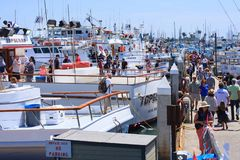 Day at the Docks in Point Loma, California 2015 Stock Image