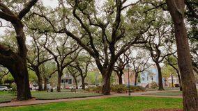 Day establishing shot of typical park or town square in Savannah. A daytime outside exterior (DX) establishing shot of a typical tree-lined park or town square stock video footage