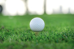 Day of golf. Golf ball is on the tee for a golf ball on the gree Stock Photos