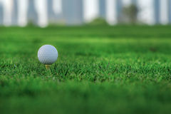 Day of golf. Golf ball is on the tee for a golf ball on the gree Stock Images