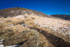 Day hike to Roan Mountain Royalty Free Stock Photos
