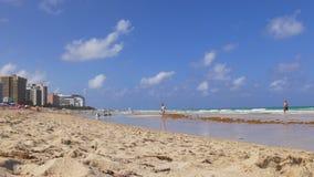 Day miami sunny isles beach ocean bay panorama 4k florida usa stock footage