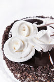 Day And Night chocolate cake with decorative roses Royalty Free Stock Photo