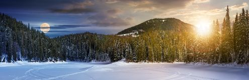 Day and night concept of winter spruce forest. Location lake Synevyr, Ukraine, frozen in winter. beautiful panorama of in Carpathian nature Royalty Free Stock Images