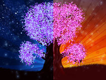 Day and night tree Stock Photo