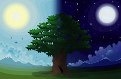 Day and night. The tree in a field on a background of mountains in the daytime and at night Royalty Free Stock Photo