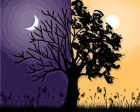 Day and night violet tree vector background
